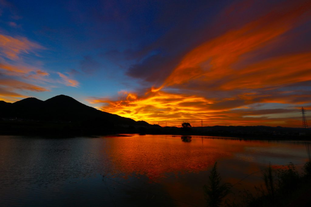 二上山を望む千股池湖畔